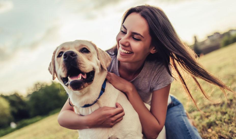 dog-training-classes-marlborough-ma-2